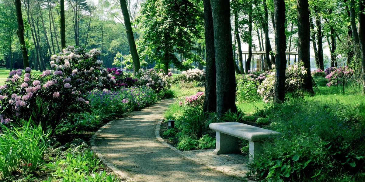 Rhododendron-Weg