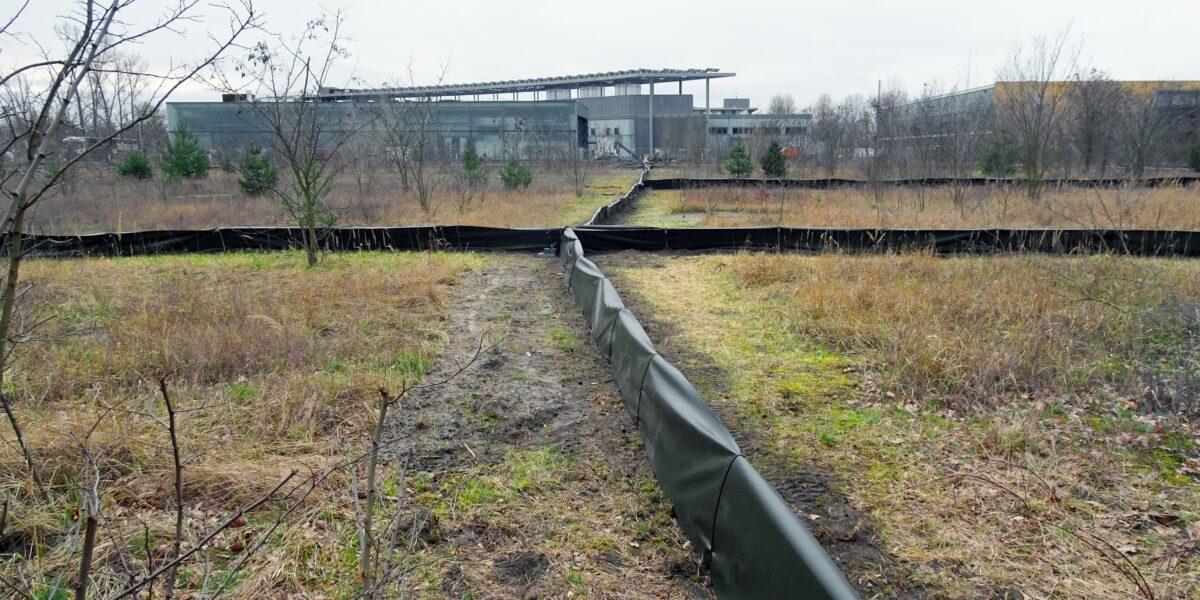 Fangzäune auf der Vorhabenfläche in Adlershof